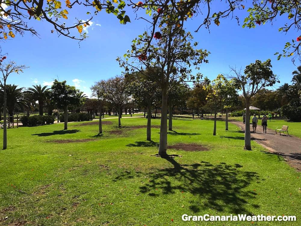 Gran Canaria Weather February Parque Sur Maspalomas 2018