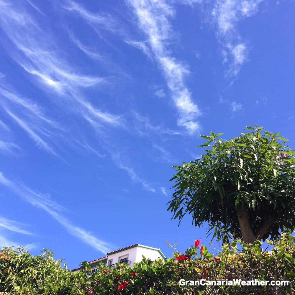 Gran Canaria Weather January Arguineguin Loma Dos 2016