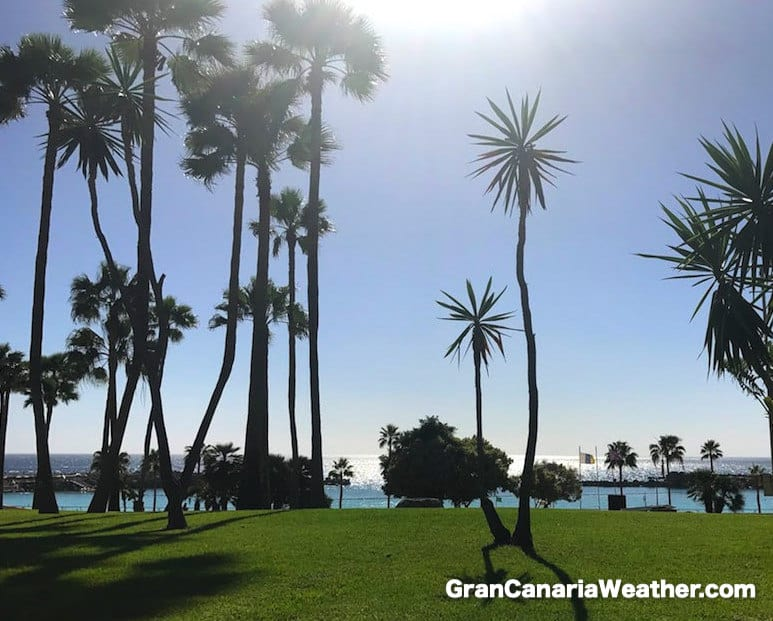 Gran Canaria Weather March Amadores Beach Puerto Rico 2017