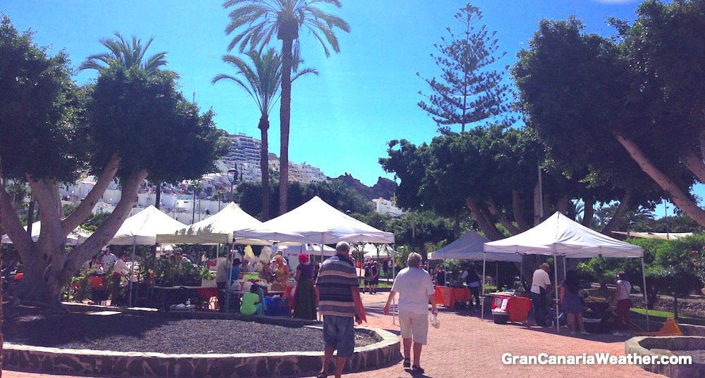 Gran Canaria Weather November Puerto Rico Farmer's Market 2015